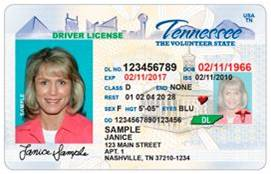 TN drivers license